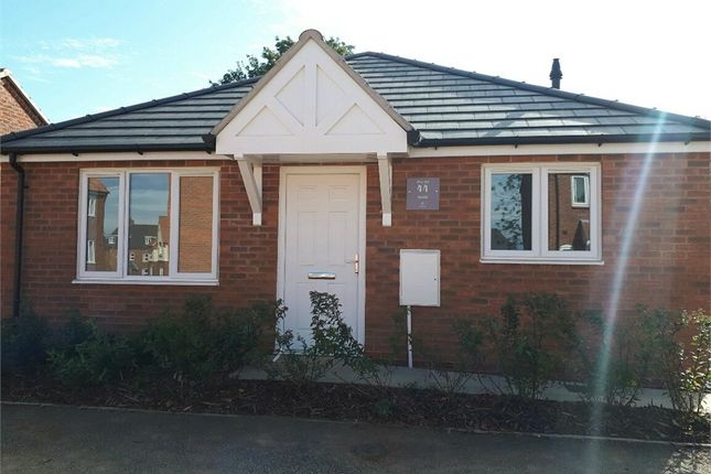 Thumbnail Detached bungalow for sale in Harris Drive, Houghton-On-The-Hill, Leicester