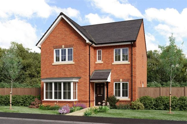 "Thumbnail Detached house for sale in ""The Mitford"" at Netherton Colliery, Bedlington"