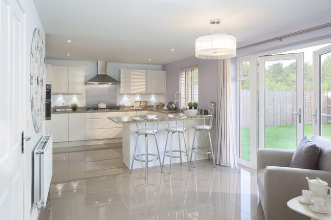 """Thumbnail Detached house for sale in """"Shelbourne"""" at Chalton Lane, Clanfield, Waterlooville"""