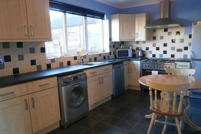 Thumbnail Property to rent in Blenheim Road, Lindholme, Doncaster