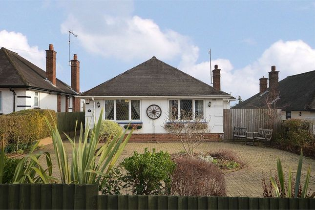 Thumbnail Detached house for sale in Rushmere Road, Abington, Northampton