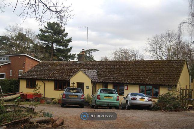 Thumbnail Bungalow to rent in Fen Walk, Woodbridge
