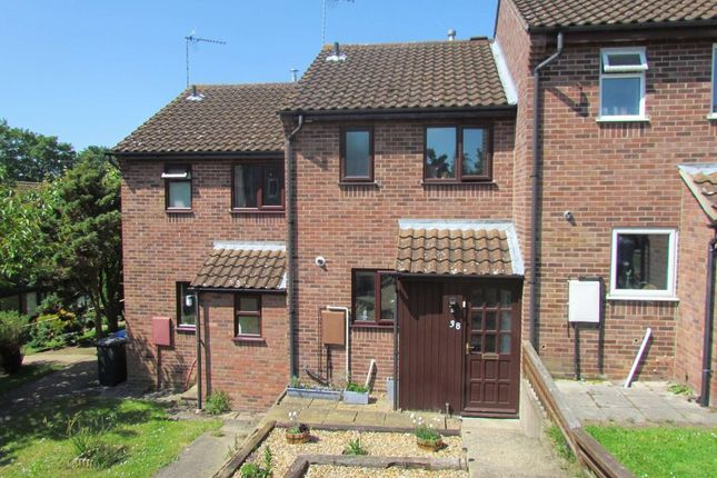 Thumbnail Terraced house to rent in Bramblewood Way, Halesworth