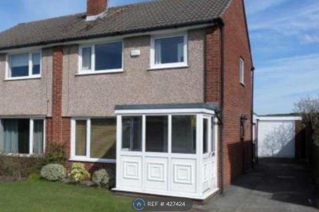 Thumbnail Semi-detached house to rent in Chestnut Avenue, Preston