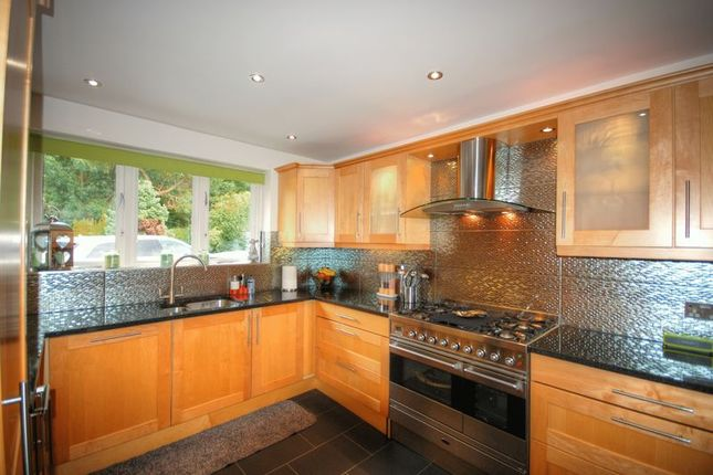 Thumbnail Bungalow for sale in The Gables, Fairmoor, Morpeth