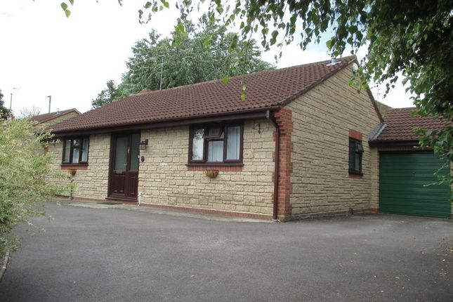 Thumbnail Detached bungalow to rent in St. James Park, Yeovil