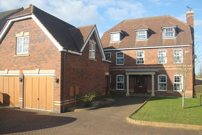 Thumbnail Detached house to rent in Chestnut Drive, Oadby, Leicester