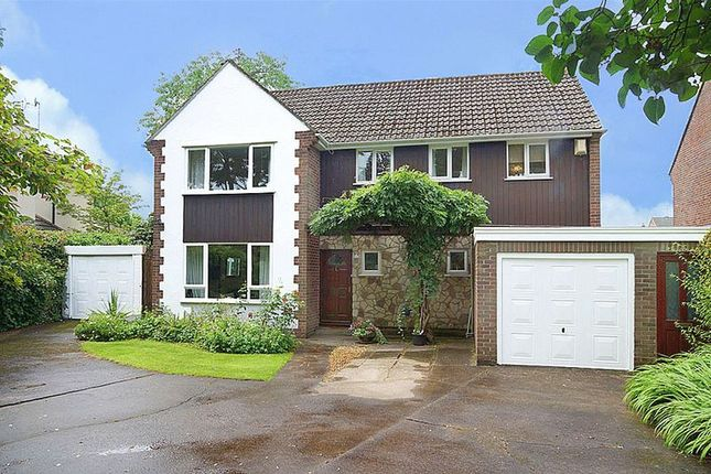 Thumbnail Detached house for sale in 95 Hicks Common Road, Winterbourne, Bristol