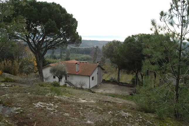 Thumbnail Farmhouse for sale in Mangualde, Beira Litoral, Portugal