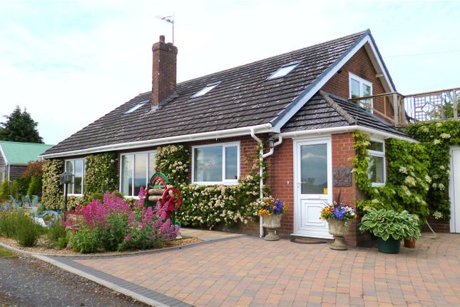 Thumbnail Bungalow for sale in Tregynon, Newtown, Powys