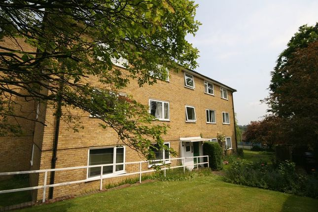2 bed flat to rent in Sumner Road, Farnham