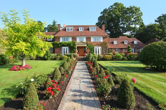 Thumbnail Detached house to rent in Clare Hill, Esher