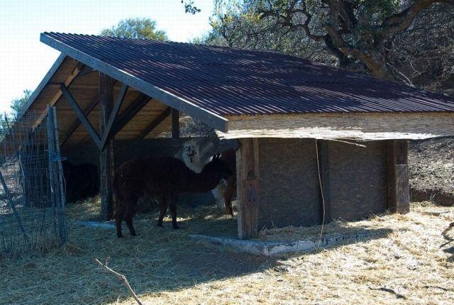 Animal Shelter of Spain, Málaga, Mijas, La Cala