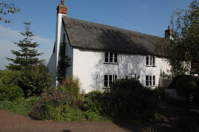 Thumbnail Semi-detached house for sale in Squires Road, Halvergate, Norwich