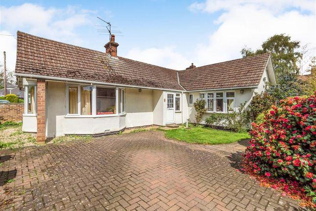 Thumbnail Detached bungalow for sale in Spelman Road, Norwich