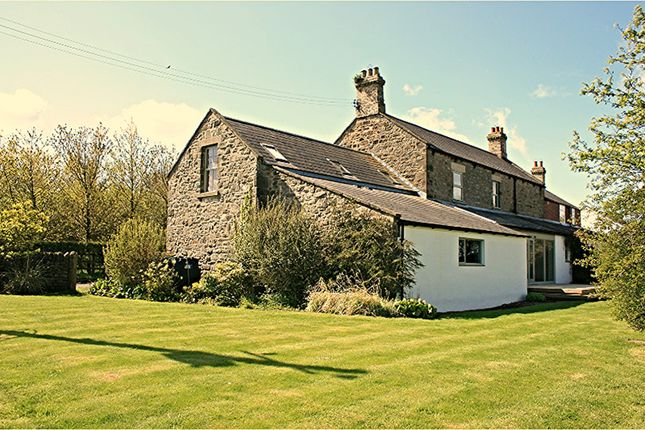 Thumbnail Property to rent in Ponteland, Northumberland