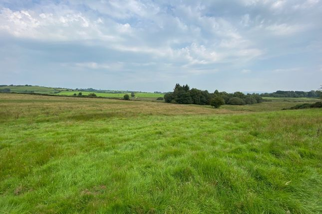 Thumbnail Land for sale in Tynreithyn, Tregaron