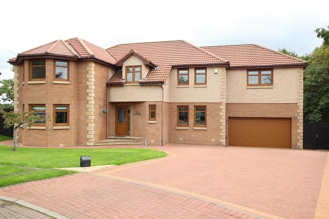 Thumbnail Detached house for sale in Faulkner Grove, Motherwell