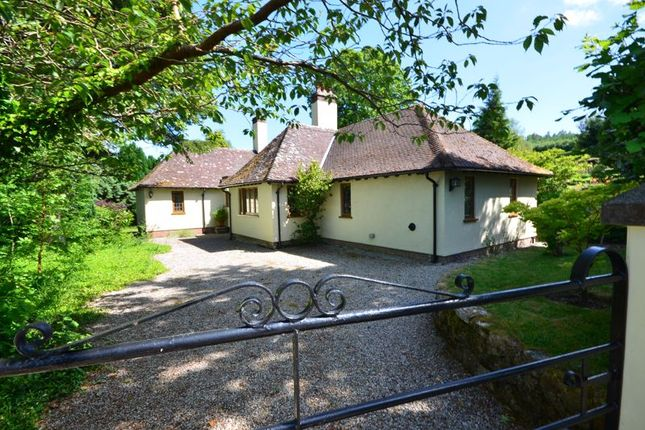 Thumbnail Detached bungalow for sale in Gidleigh Lodge, Gidleigh, Chagford