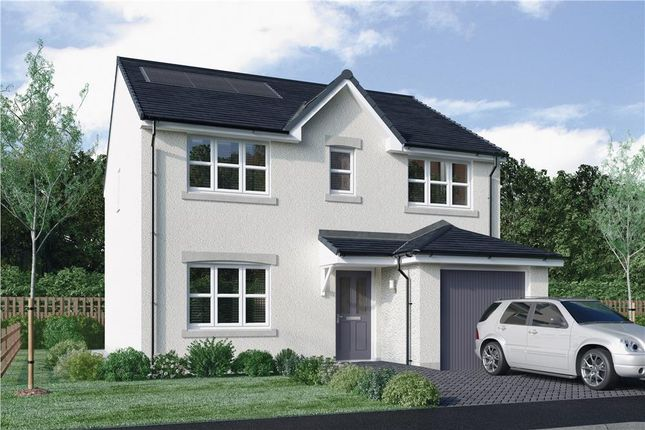 "Thumbnail Detached house for sale in ""Lyle"" at East Calder, Livingston"