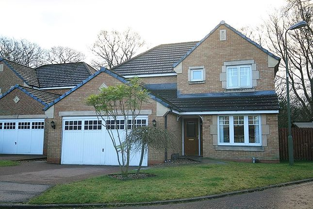 Thumbnail Detached house for sale in Teviot Drive, Murieston, Livingston