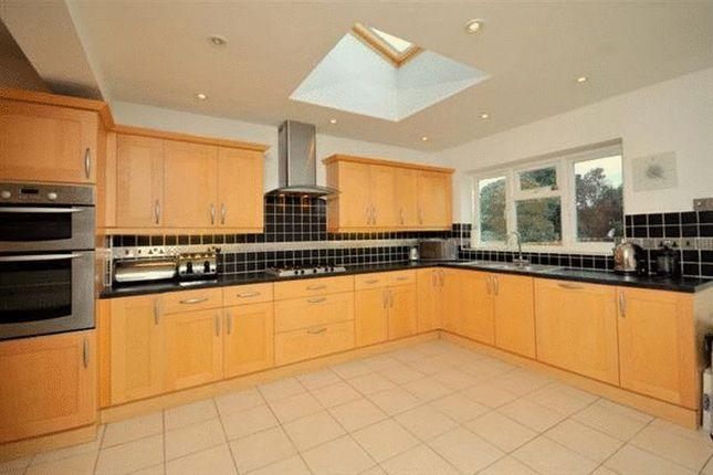 Thumbnail Semi-detached house to rent in Thurston Avenue, Southend-On-Sea