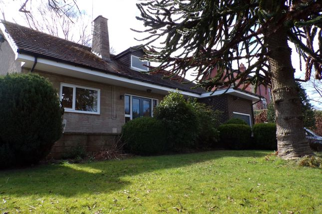 Thumbnail Bungalow for sale in Highford Lane, Hexham