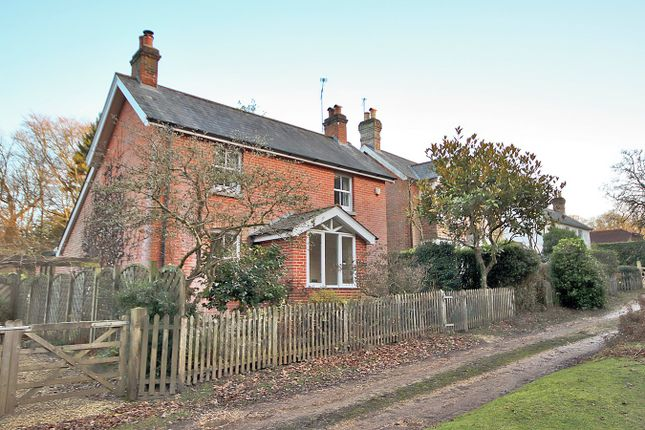 Thumbnail Cottage for sale in Church Lane, Burley, Ringwood
