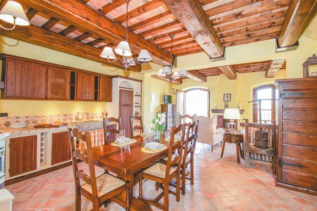 Kitchen of Lajatico, Volterra, Pisa, Tuscany, Italy