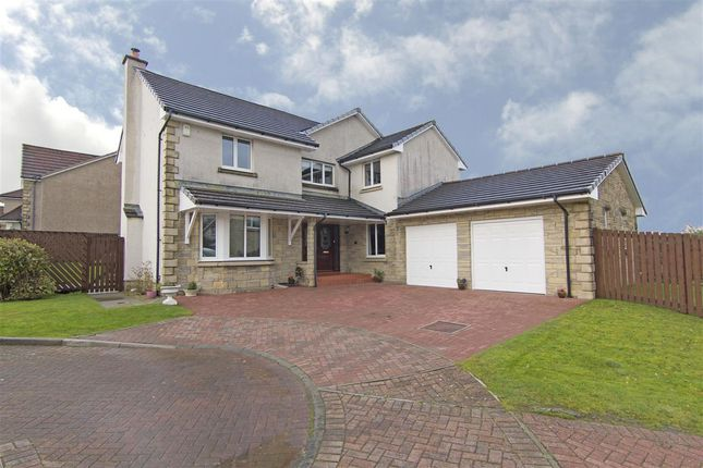 Thumbnail Detached house for sale in Mcnab Gardens, Falkirk