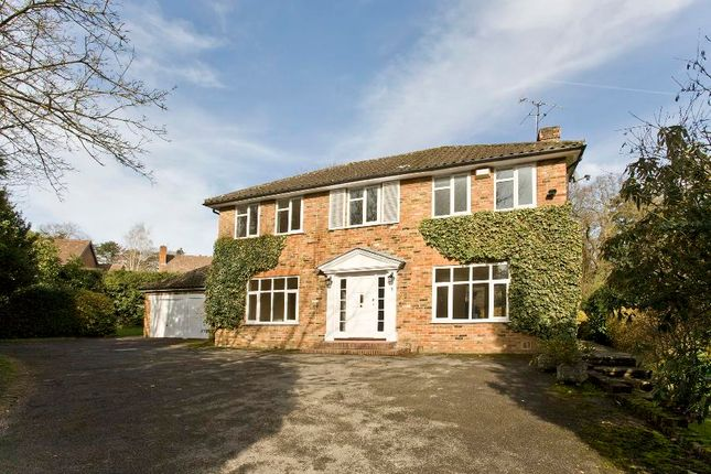 Thumbnail Detached house to rent in Greenways Drive, Sunningdale, Ascot