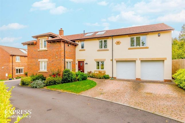 Thumbnail Detached house for sale in Applehayes Rise, Easton-In-Gordano, Bristol, Somerset