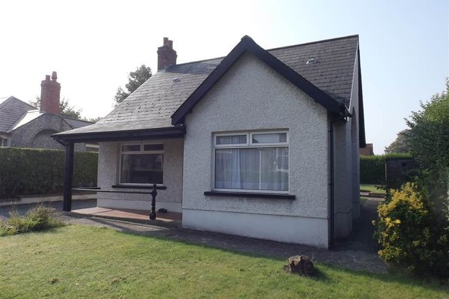 Thumbnail Terraced bungalow to rent in 11, Park Avenue, Holywood