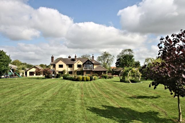 Thumbnail Equestrian property for sale in Main Street, Gunby, Grantham, Leicestershire
