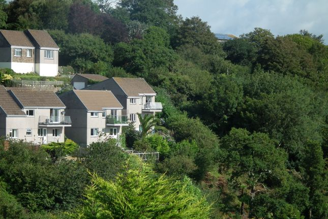 Thumbnail Detached house for sale in Downs Lane Park, West Looe