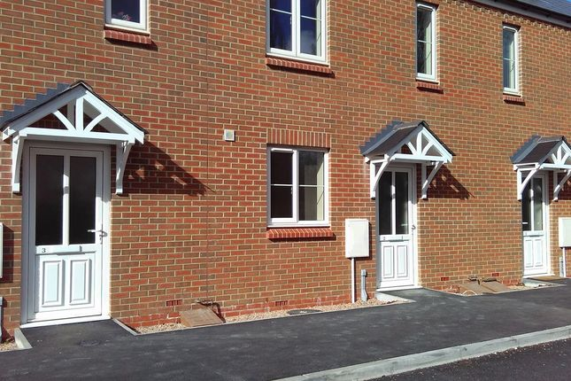 Thumbnail Semi-detached house to rent in Dolphin Court, Canley, Coventry