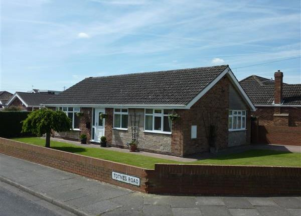 Thumbnail Detached bungalow for sale in Totnes Road, Scartho, Grimsby