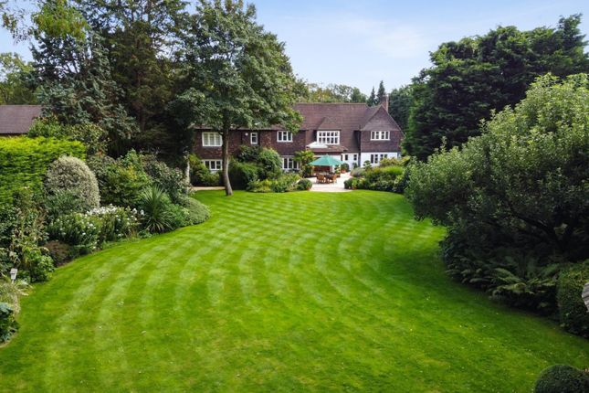 Thumbnail Detached house for sale in Cranley Road, Walton-On-Thames
