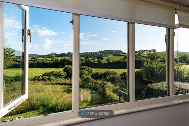 Thumbnail Semi-detached house to rent in Colmers View, Bridport