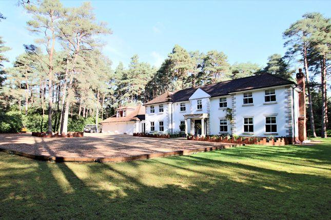 Thumbnail Detached house for sale in Avon Castle Drive, Avon Castle, Ringwood