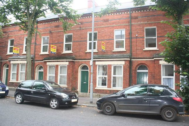 Thumbnail Terraced house to rent in 15, Wolseley Street, Belfast