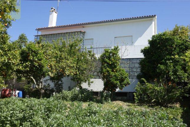 Thumbnail Detached house for sale in Cebolais De Cima E Retaxo, Castelo Branco, Castelo Branco