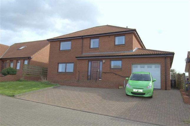 Thumbnail Detached house for sale in Eildon View, Tweedmouth, Berwick Upon Tweed