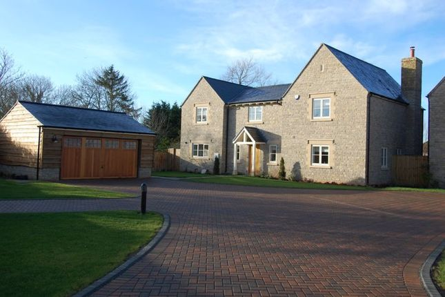 Thumbnail Detached house for sale in Green Road, Kidlington