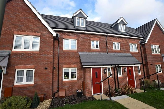 Thumbnail Terraced house to rent in Larkspur Court, Wilkins Drive, Paignton, Devon