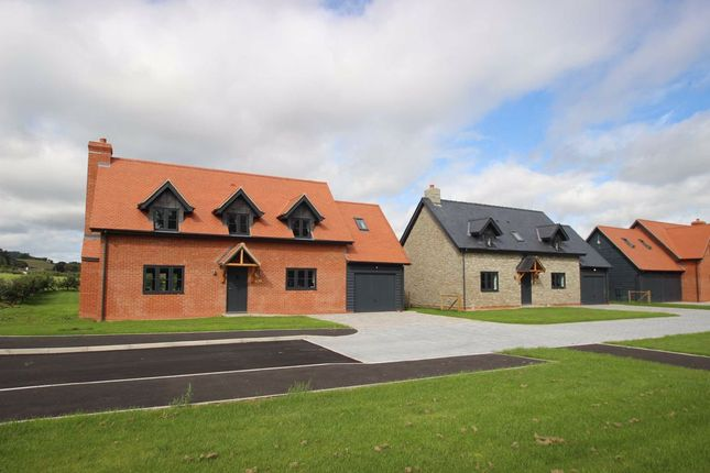 Thumbnail Detached house for sale in Gatherstone, Wellington, Hereford
