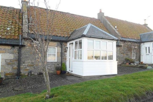 Thumbnail Terraced house to rent in St. Andrews