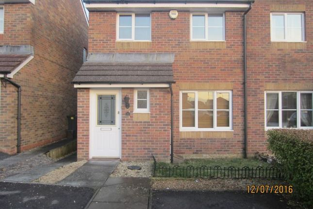 Thumbnail Semi-detached house to rent in Vervain Close, Cardiff