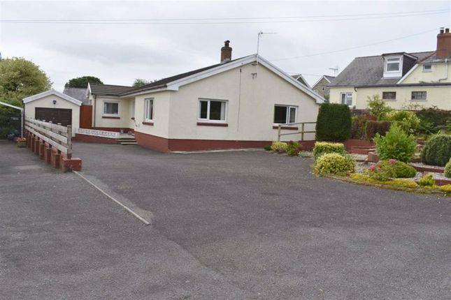 Thumbnail Detached bungalow for sale in Rhos, Llandysul