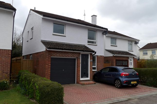 Thumbnail Detached house to rent in Kingfisher Way, Ringwood